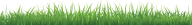 Grass Free PNG Image Download 3