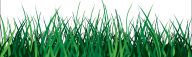 Grass Free PNG Image Download 38