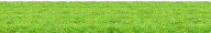 Grass Free PNG Image Download 43