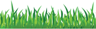 Grass Free PNG Image Download 5