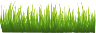 Grass Free PNG Image Download 6