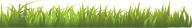 Grass Free PNG Image Download 7
