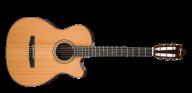 Guitar Free PNG Image Download 23