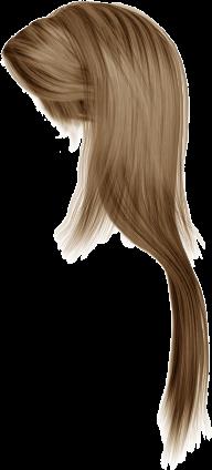 Hair Free PNG Image Download 2