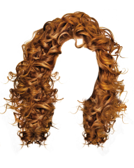 Hair Free PNG Image Download 20