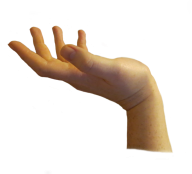Hands PNG Free Image Download 16