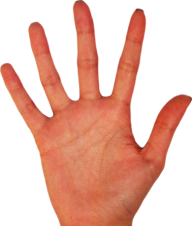 Hands PNG Free Image Download 62
