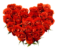 heart shapped red rose with leaves free png download
