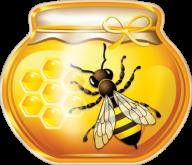 Honey PNG Free Image Download 1