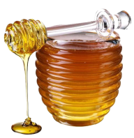 Honey PNG Free Image Download 12