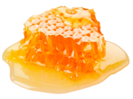 Honey PNG Free Image Download 13