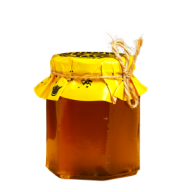 Honey PNG Free Image Download 14