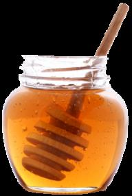 Honey PNG Free Image Download 20