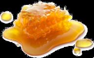 Honey PNG Free Image Download 23