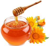 Honey PNG Free Image Download 28