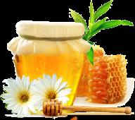 Honey PNG Free Image Download 29