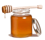 Honey PNG Free Image Download 32