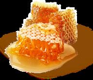 Honey PNG Free Image Download 33