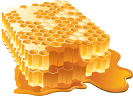 Honey PNG Free Image Download 4