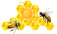 Honey PNG Free Image Download 8