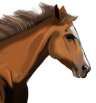 Horse PNG Free Image Download 25