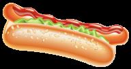 Hot Dog PNG Free Image Download 36