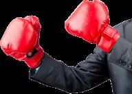 kick boxing gloves free png download
