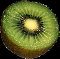 Kiwi PNG Free Download 10