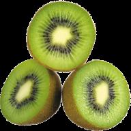 Kiwi PNG Free Download 13