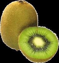 Kiwi PNG Free Download 16
