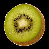 Kiwi PNG Free Download 21