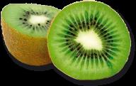 Kiwi PNG Free Download 22