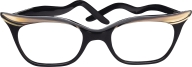 ladies specks png