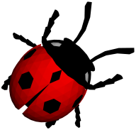 Lady bug PNG Free Download 11