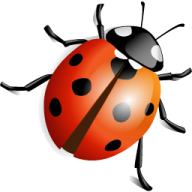 Lady bug PNG Free Download 12