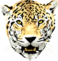 leopard PNG Free Download 29