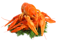 Lobster PNG Free Download 16