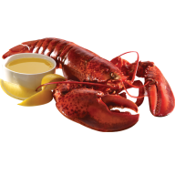 Lobster PNG Free Download 21