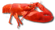 Lobster PNG Free Download 28