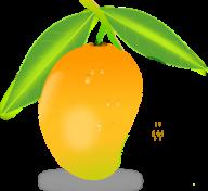 Mango PNG Free Download 1