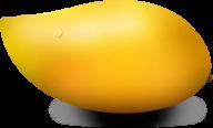 Mango PNG Free Download 10