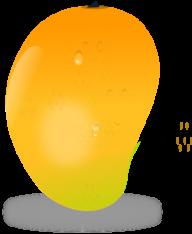 Mango PNG Free Download 15