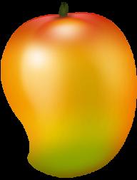 Mango PNG Free Download 16