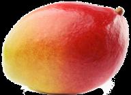 Mango PNG Free Download 2