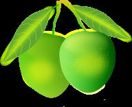 Mango PNG Free Download 21