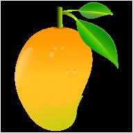 Mango PNG Free Download 22