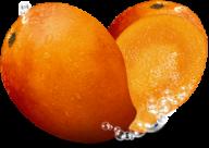 Mango PNG Free Download 23