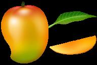 Mango PNG Free Download 26