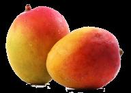 Mango PNG Free Download 3