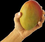 Mango PNG Free Download 5